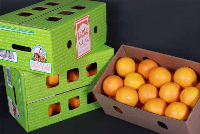 ALG-Estates-Summer-Oranges