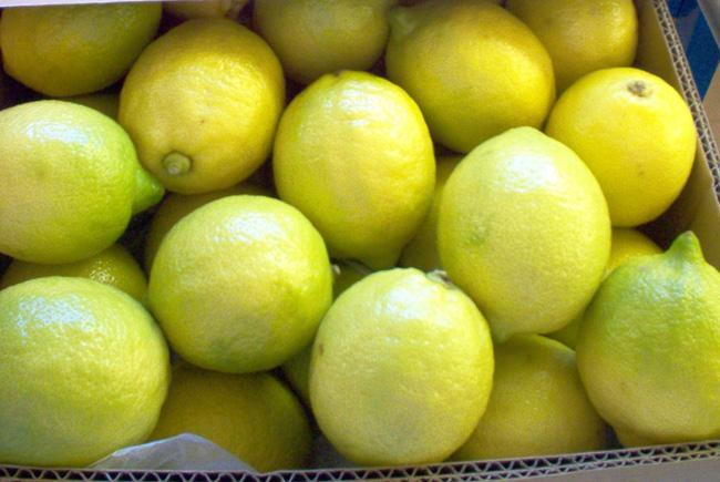 ALG-Estates-Lemon-Producers